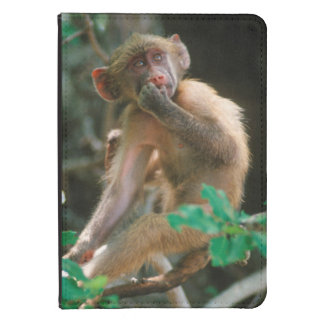 Young Chacma Baboon (Papio Ursinus) Sitting Kindle Touch Cover