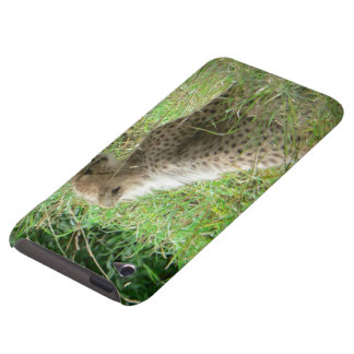 young cheetah barely there iPod cases