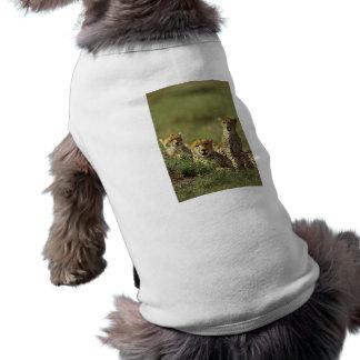 Young Cheetah Group Dog Tee Shirt
