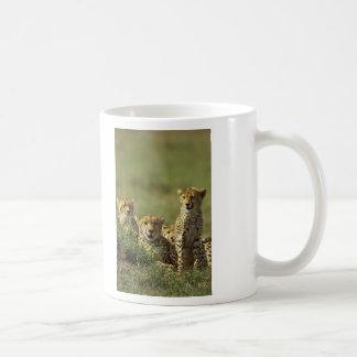Young Cheetah Group Classic White Coffee Mug