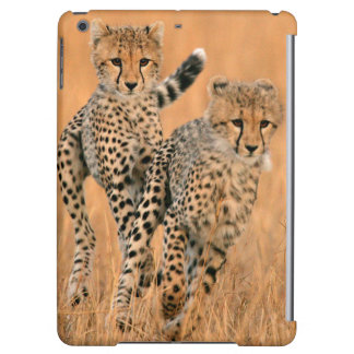 Young Cheetahs (Acinonyx Jubatus) Running Cover For iPad Air