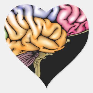 Young child brain concept heart sticker