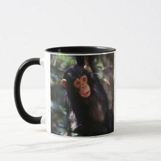 Young Chimpanzee hanging at forest Mug