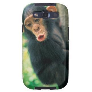 Young Chimpanzee (Pan troglodytes) Galaxy SIII Cases