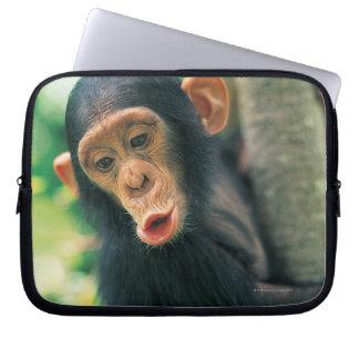 Young Chimpanzee (Pan troglodytes) Laptop Sleeve