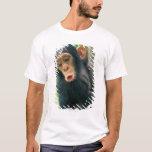 Young Chimpanzee (Pan troglodytes) T-Shirt