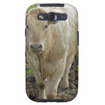 Young Cream Bull at water hole Galaxy SIII Covers