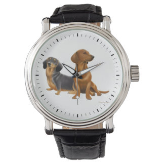 Young Dachshund Dogs Watch