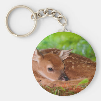 Young_Deer_Fawn-1 Basic Round Button Keychain
