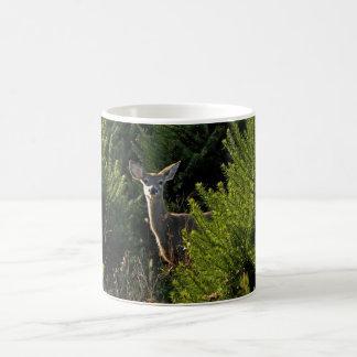Young Deer in Pine Trees Mug