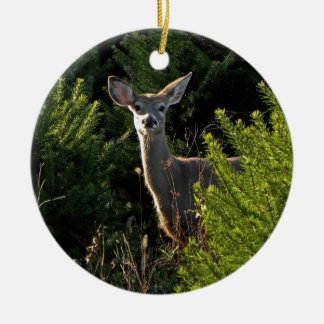 Young Deer in Pine Trees Ornament