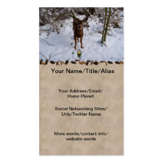 Young Deer In Winter Double-Sided Standard Business Cards (Pack Of 100)