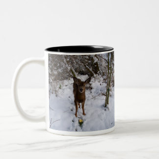 Young Deer In Winter Two-Tone Coffee Mug