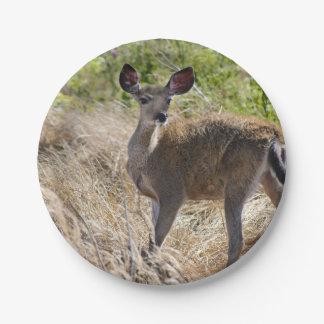 Young Deer Paper Plate