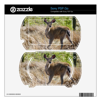 Young Deer Sony PSP Go Decal