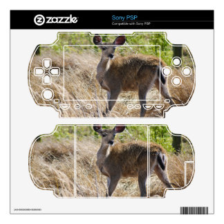Young Deer PSP Decal