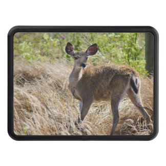 Young Deer Trailer Hitch Cover