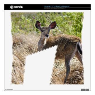 Young Deer Xbox 360 S Decals
