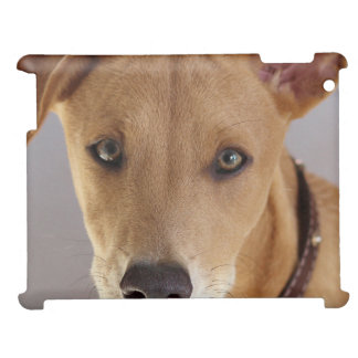 Young Dog Case For The iPad