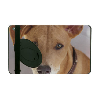 Young Dog iPad Cases