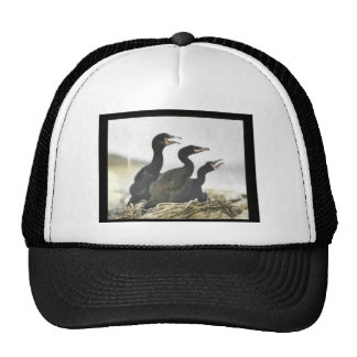 Young Double-crested Cormorants Mesh Hats