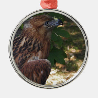 Young Eagle Metal Ornament