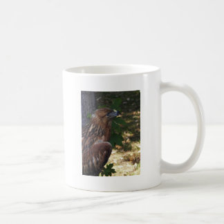 Young Eagle Coffee Mugs