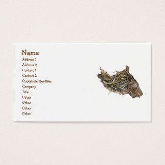 Young Eastern Garter Snake Business Card
