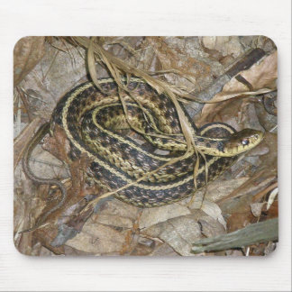 Young Eastern Garter Snake Coordinating Items Mouse Pad