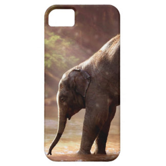 Young Elephant iPhone SE/5/5s Case