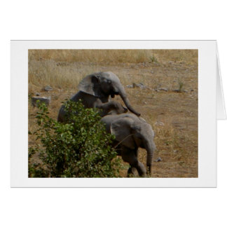 Young Elephants Horsing Around Card