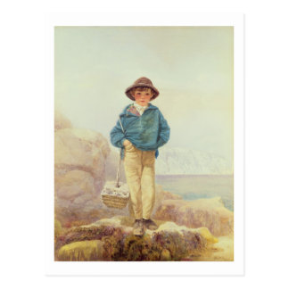 Young England - A Fisher Boy Postcard