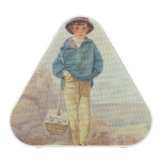 Young England - A Fisher Boy Speaker