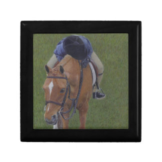 Young Equestrian Rider and Pony Gift Boxes