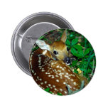 Young Fawn Button