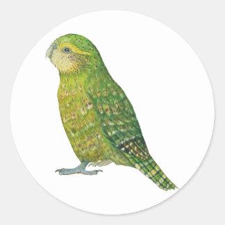 Young Female Kakapo Classic Round Sticker