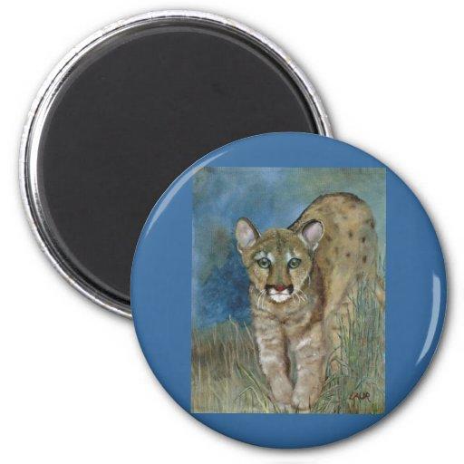 Young Florida Panther Magnet