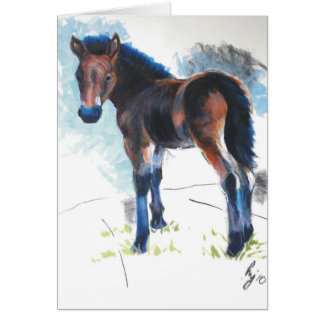 Young Foal Dartmoor Horse Painting Card
