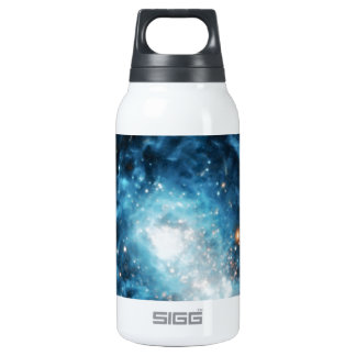 Young Galaxy 10 Oz Insulated SIGG Thermos Water Bottle