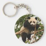 Young giant panda keychain