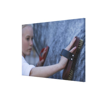 young girl brushing white horse 2 canvas print