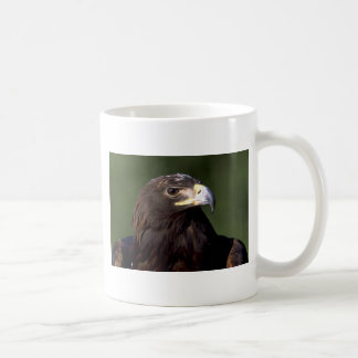 Young golden eagle coffee mugs