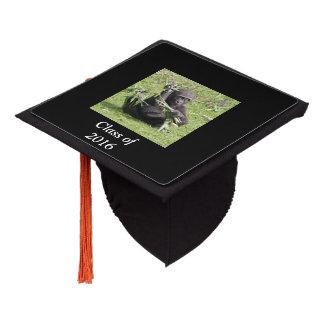 Young gorilla graduation cap topper