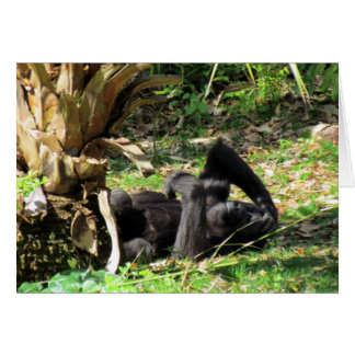 Young Gorilla Greeting Card