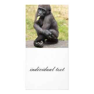 young Gorilla Photo Cards