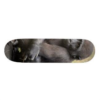 young Gorilla Custom Skateboard