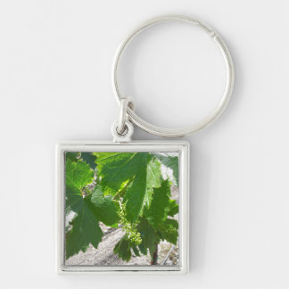 Young Green Grapes on the Vine in Spring Keychain