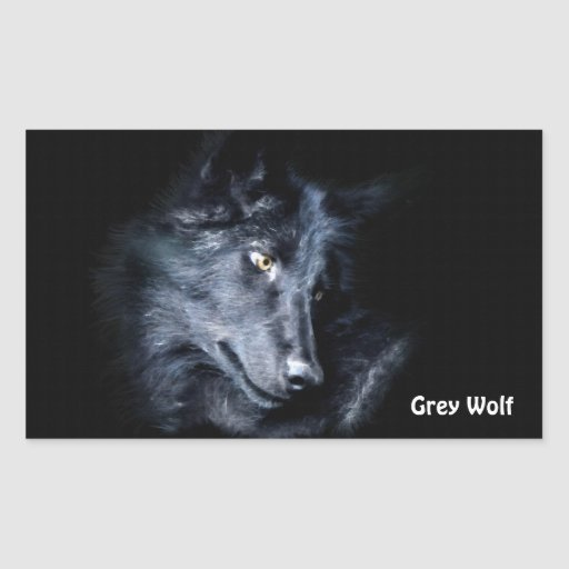 YOUNG GREY WOLF Wildlife Supporter Stickers