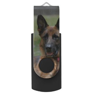 Young GSD Flash Drive
