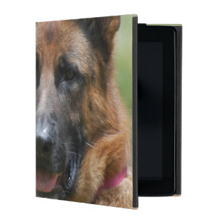 Young GSD iPad Cover